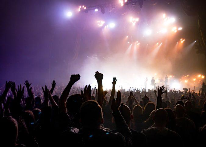 Une foule lors d'un concert.